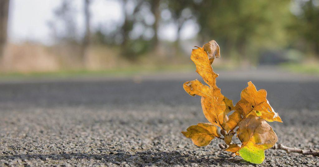 Fall Asphalt Maintenance Checklist